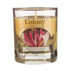 Свеча ароматическая в стеклянном стакане Цветущая жимолость Wax Lyrical