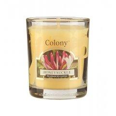 Свеча ароматическая лампадная Цветущая жимолость Wax Lyrical